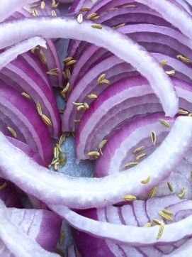 Red onion and fennel seeds