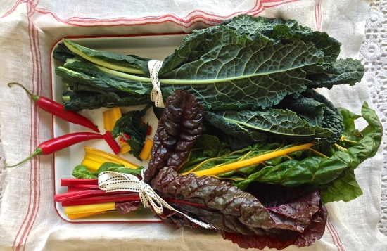 Rainbow chard and cavolo nero